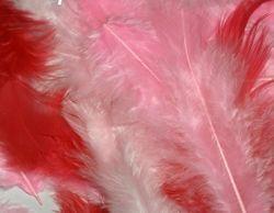 Peříčka červená mix odstínů