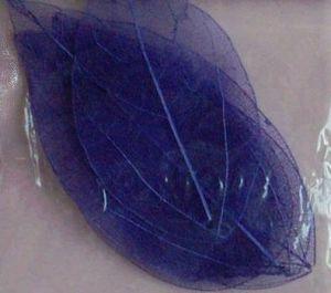 Sušené listy - fialové