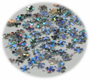 Čtyřlístek stříbrná hologram